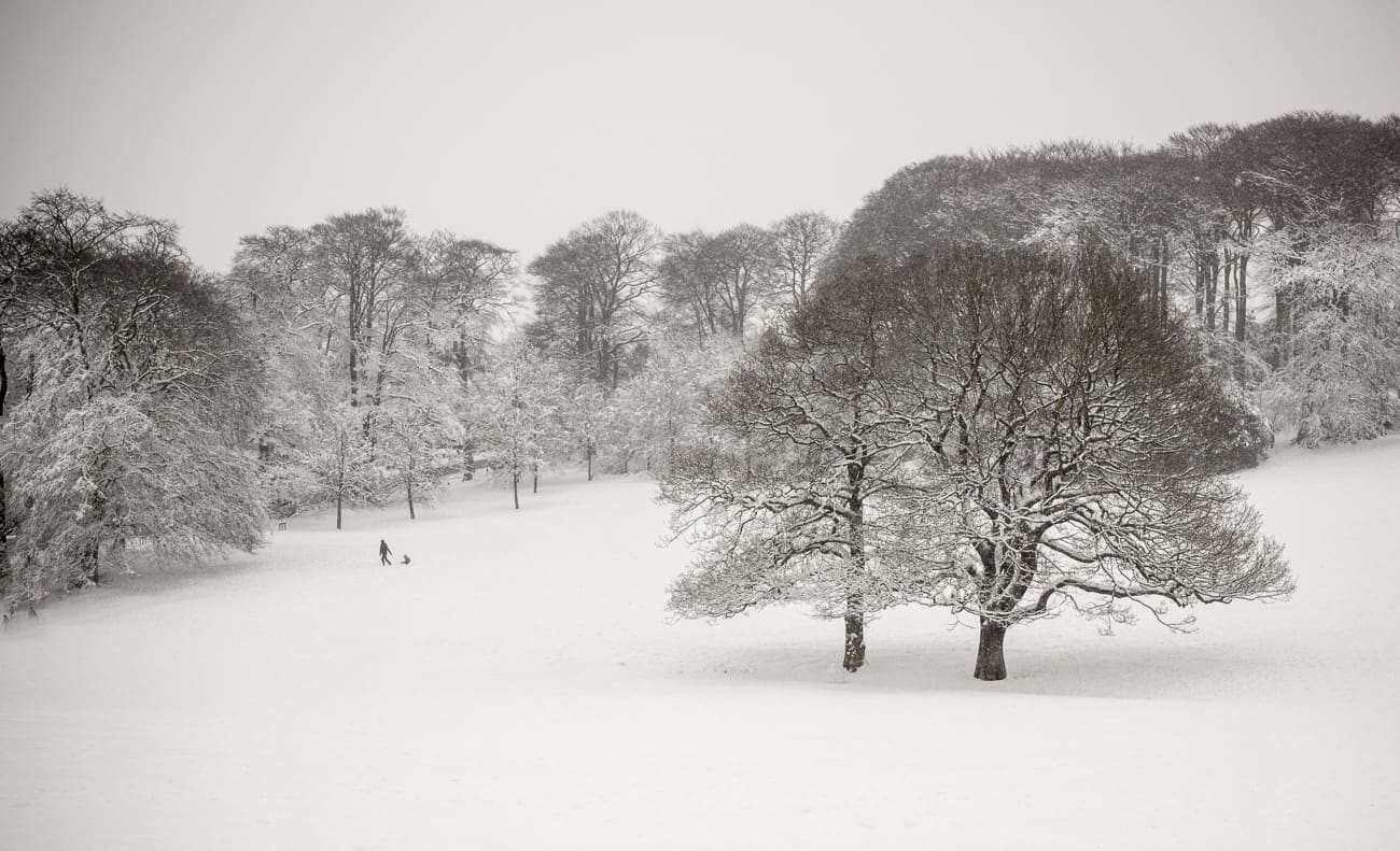 Bearwood photography - Warley Woods, Winter Snow
